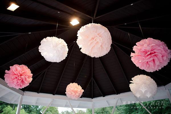 Hanging Tissue Paper Pom Poms