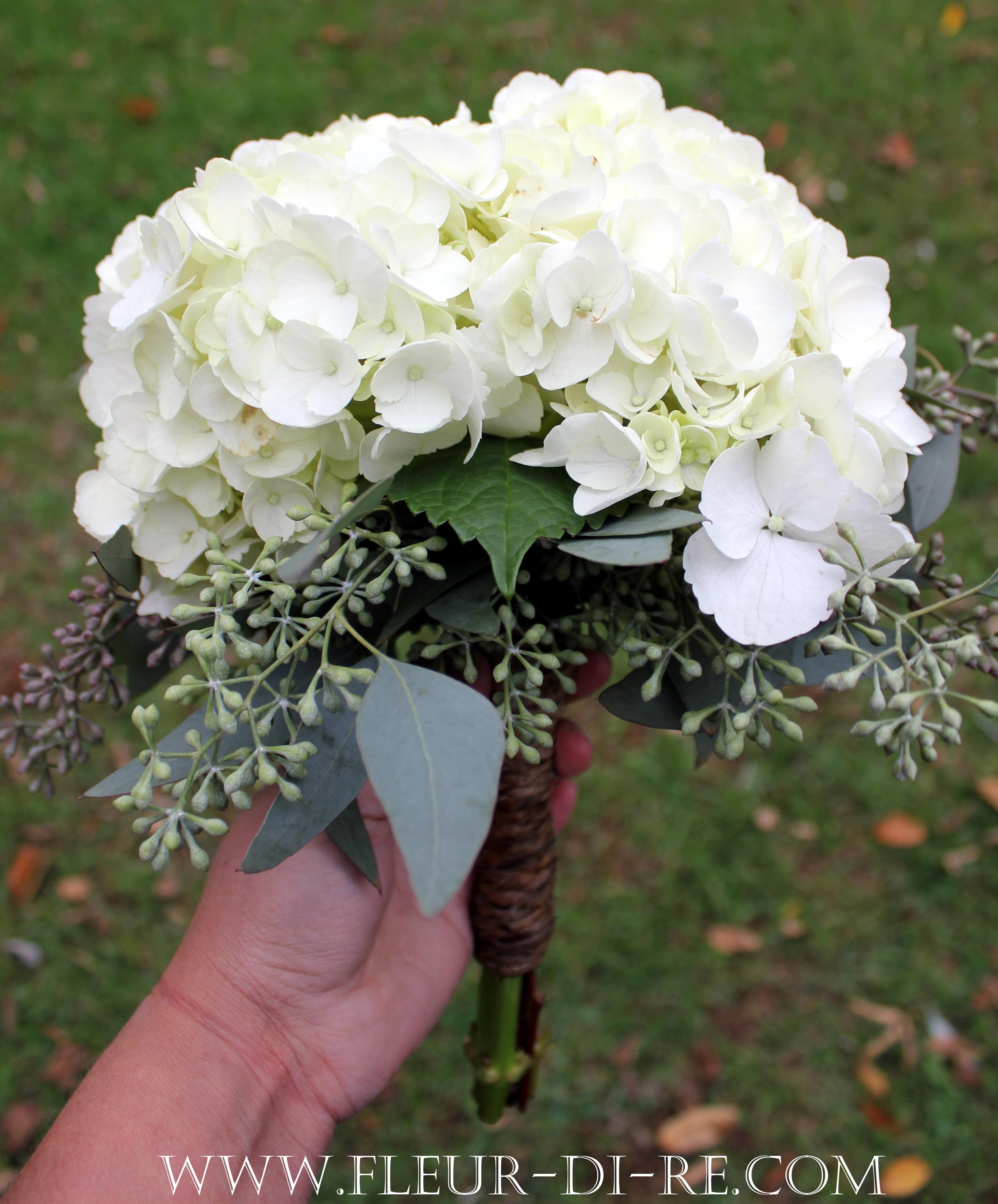 Hydrangea fleur di re