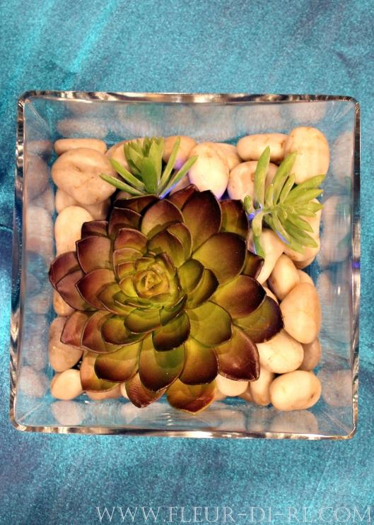Echeveria Sedum Centerpiece