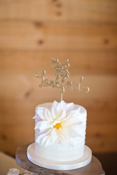 Gambol Photography   Wow Factor Cakes